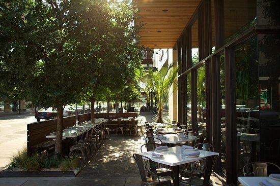 the outdoor patio of la condesa in