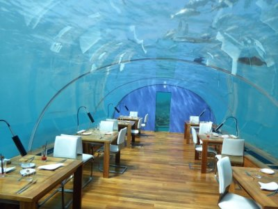 Ithaa Undersea Restaurant cocktail hour - Picture of ...