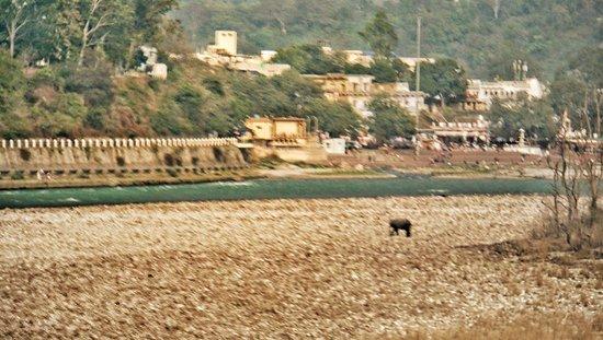 Photo1 Jpg Picture Of Soank Paradise Rishikesh Tripadvisor