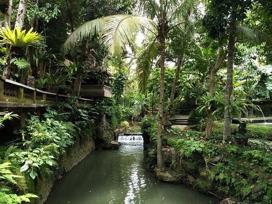tropical landscape and river