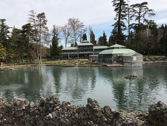 Piscina termale  Picture of Villa dei Cedri Cola  TripAdvisor