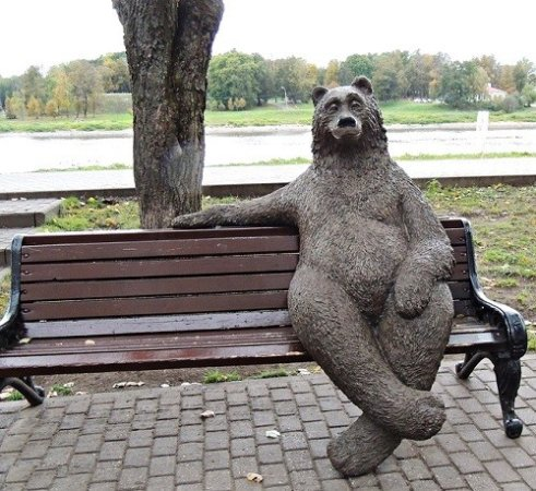 bear on the bench