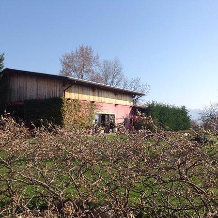 Agriturismo Casa Rossa ai Colli BB Ragogna Provincia di