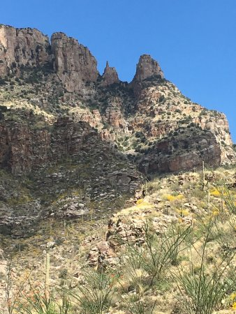 Finger Rock Trail : finger, trail, Finger, Trail, Picture, Trail,, Tucson, Tripadvisor