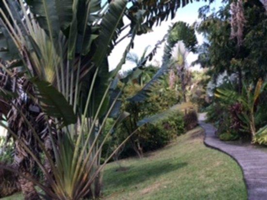 hyde park tropical garden saint