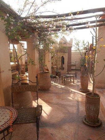Bild Der Terrasse Der Oase Mitten In Der Medina Von Marrakesh