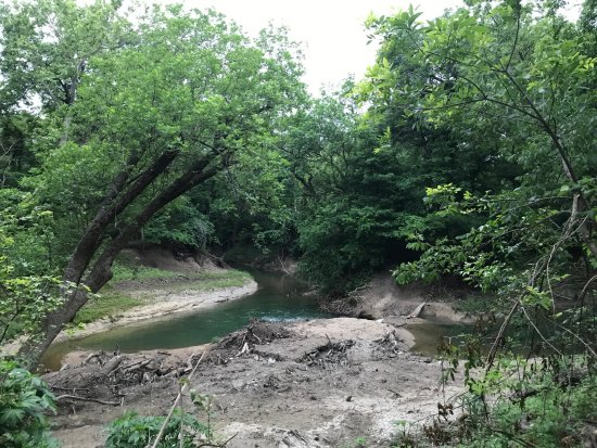 creek and riparian landscape