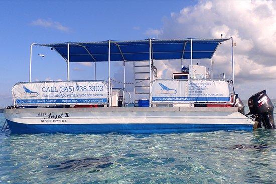 Six Senses Cayman Adventures Seven Mile Beach All You