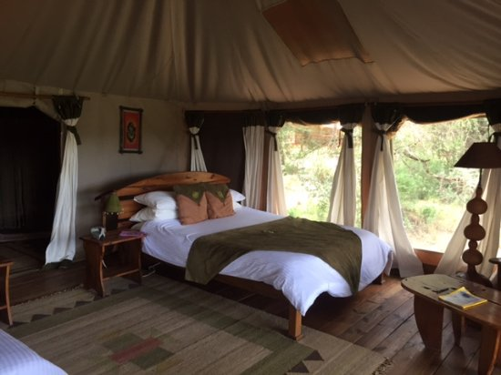 photo1jpg  Picture of Elephant Bedroom Camp Samburu