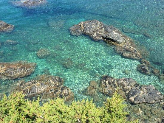 photo1jpg  Picture of Bagno Le Forbici Rosignano