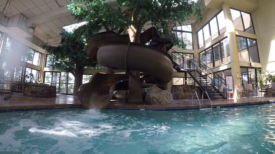 Indoor Pool Area Picture Of Park Vista Doubletree By