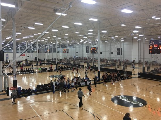 Image result for spooky nook boys volleyball