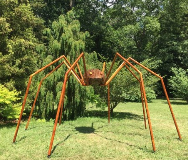 Tyler Arboretum Big Bugs Daddy Longlegs