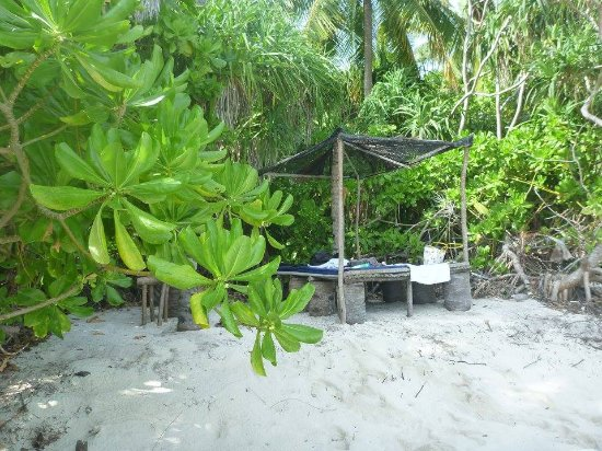 Hideaway On Fehendhoo Bikini Beach Picture Of Tropical