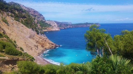 playa coll baix alcudia