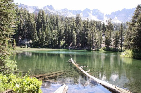 Coldwater Creek Camping