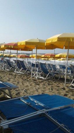 Bagno Italia Marina di Massa Italien  omdmen  TripAdvisor