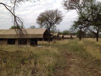 Luxury tents in Serengeti Plains - Picture of Kati Kati ...