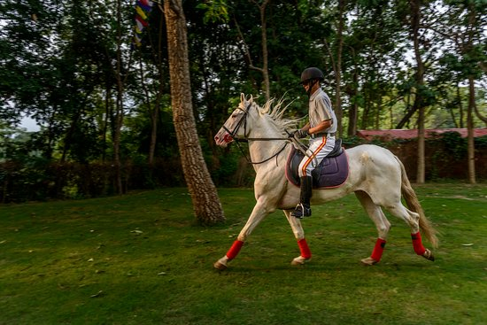 Fun activities to do around in Kathmandu Horse Riding