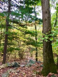 Pine Grove Furnace State Park (Pennsylvania) - 2018 All ...
