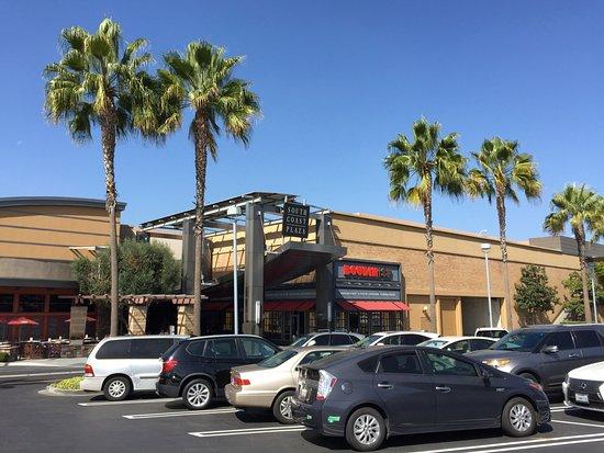 South Coast Plaza Costa Mesa CA Top Tips Before You Go
