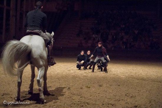 Escrime à pieds - Picture of Academie Equestre de Versailles ...