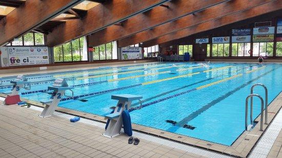 Vasca nuoto  Foto di Piscina di Belluno Belluno