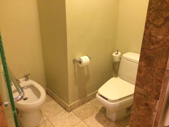 Golden Swim Up Bathroom Shower With Double Shower Head