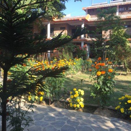 Season Of Marigold At Chautari Garden Resort Picture Of