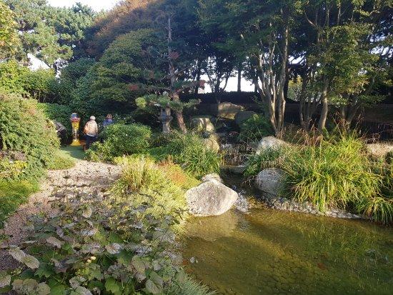 jardin japonais photo de jardin