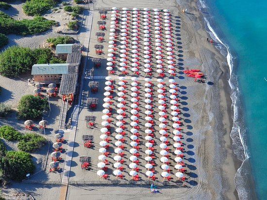 Marina di Bibbona Photos  Featured Images of Marina di Bibbona Province of Livorno  TripAdvisor