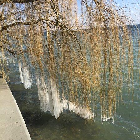 Insel Mainau  Konstanz  Aktuelle 2018  Lohnt es sich