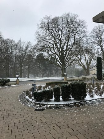 View On The Park Picture Of Courtyard Bochum Stadtpark
