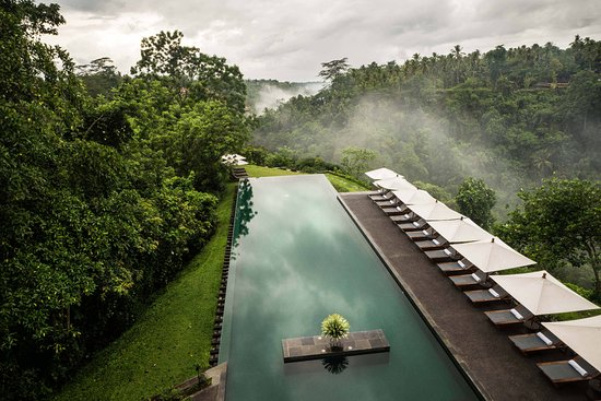 The 10 Best Jungle Resorts In Bali Mar 2021 With Prices Tripadvisor