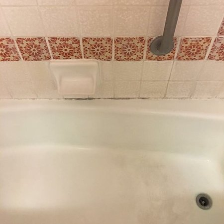 absolutely horrifying bathroom mild