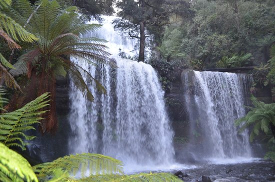 Russell Falls Is Very Close And Popular With Guests