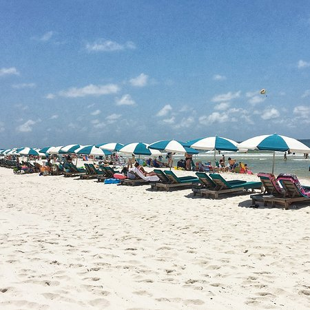 beach chairs with umbrellas taupe dining canada for rent picture of turquoise place