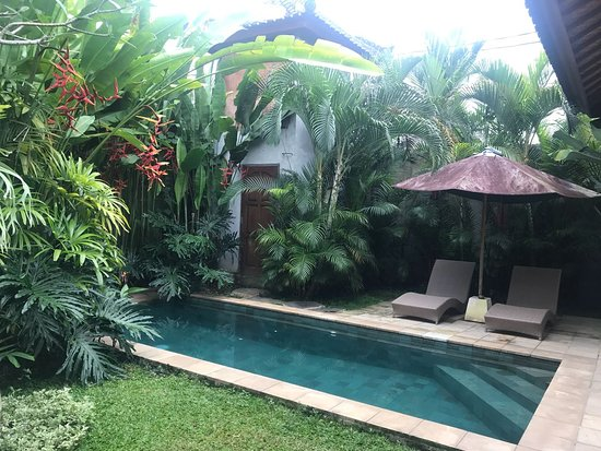 Villa Jepun Wonderful Accommodation In Ubod Picture Of