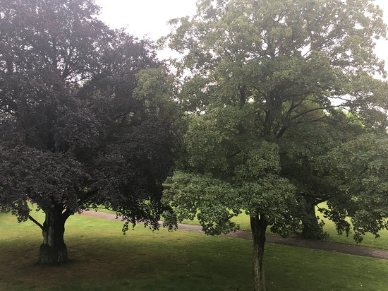 Park Picture Of Courtyard Bochum Stadtpark Tripadvisor