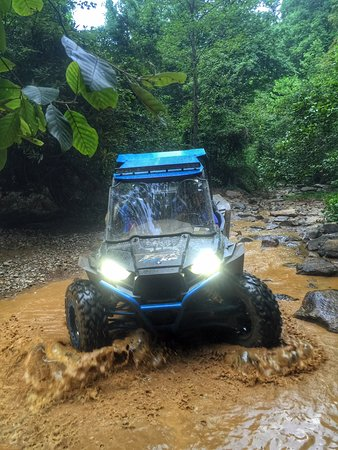 Royal Blue Trails : royal, trails, Direct, Access, 200,000, Acres, Trails., Picture, Royal, Resort,, Pioneer, Tripadvisor