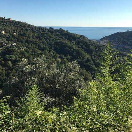 Ristorante La Baita in Genova con cucina Cucina ligure