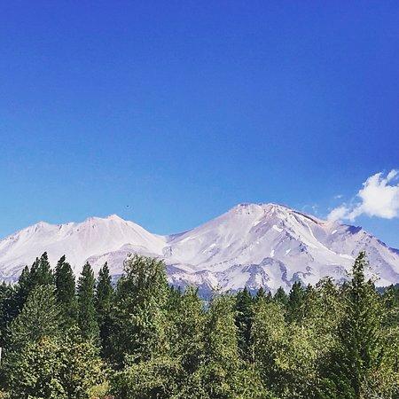 Cold Creek In Mount Shasta