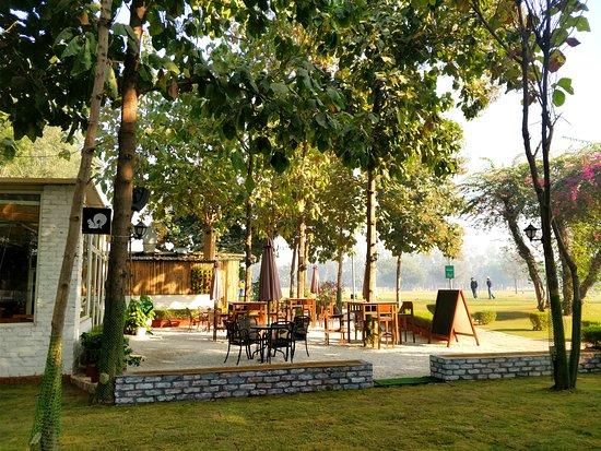 HAMONI: CAFE BY THE GREENS, Gurugram (Gurgaon) - Menu, Prices & Restaurant  Reviews - Tripadvisor