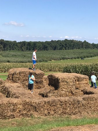 hay bail fun picture