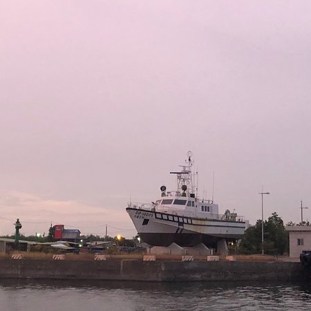 興達港觀光魚市 (茄萣) - 旅遊景點評論 - TripAdvisor