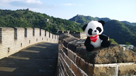 The Top 10 Things To Do Near Nanyuan Airport Beijing In