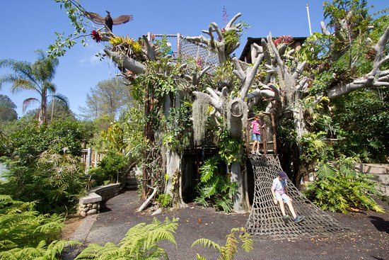 Take your children to explore a natural oasis - the San Diego Botanic Garden. The Hamilton Children's Garden is a playground full of fun things; let you kids climb Toni's Tree House,