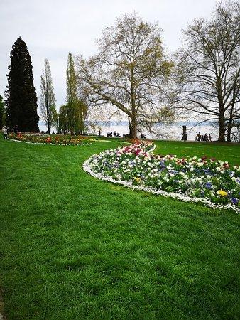 Insel Mainau Konstanz  Aktuelle 2019  Lohnt es sich