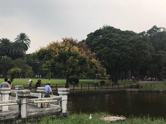 青年公園 (萬華) - 旅遊景點評論 - Tripadvisor