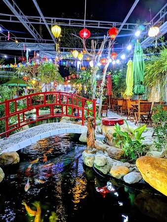 Koi Fish Cafe : COFFEE,, Restaurant, Reviews,, Photos, Phone, Number, Tripadvisor